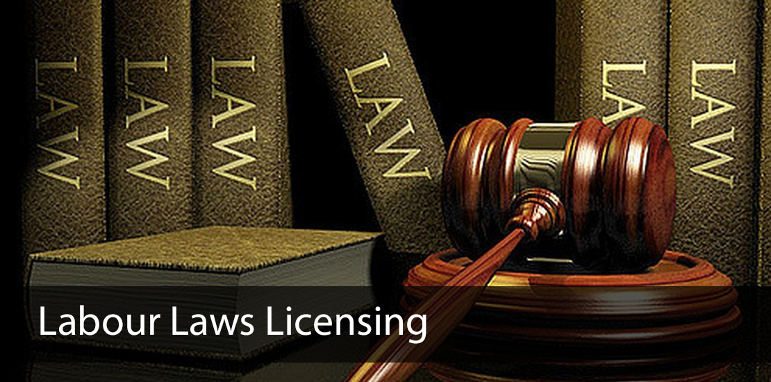 labour law licensing services