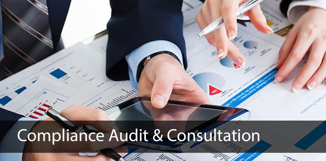 compliance audit & consultation services in india